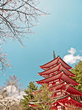 Red Japanese pagoda with sakura blossom 6 Stock Photos