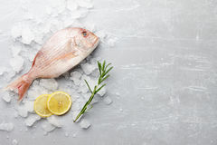 Red Japanese seabream cooking Stock Photos