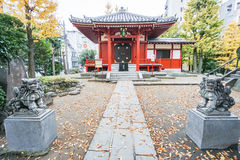 Red Japanese shrine and stone lion with falling tree leav. Red Japanese shrine and stone lion with color changing tree leaves in autumn Royalty Free Stock Photography