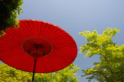 Red Japanese umbrella (parasol) Royalty Free Stock Image