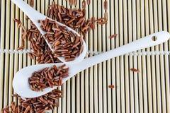 Red Jasmine Rice Royalty Free Stock Photo