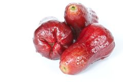 Red Java Apples Royalty Free Stock Photography
