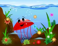 Red jellyfish, cdr vector stock photo