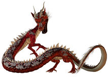 Red Jewel Dragon Stock Image