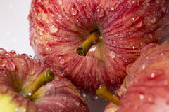Red juicy apples in drops of water, close-up. Macro. Royalty Free Stock Images