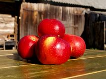 Red juicy apples on a green table royalty free stock photography