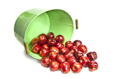 Red Juicy Apples Rolling Out Of Green Bucket Stock Photography