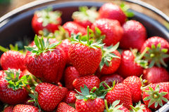 Red juicy fresh strawberries closeup Royalty Free Stock Photos