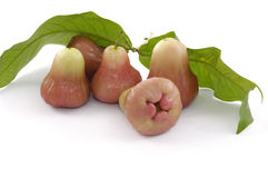 Red juicy guava Stock Image