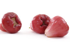 Red juicy guava Royalty Free Stock Photos