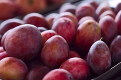 Red juicy plums. Background. Cropped snapshot royalty free stock photo