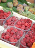 Red Juicy Raspberries. At the farmers market Stock Photography
