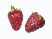 Red juicy strawberries Stock Photography