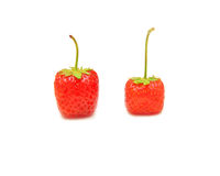 Red juicy strawberry Royalty Free Stock Photos