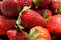 Red juicy strawberry Royalty Free Stock Photo