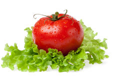 Red juicy tomato with litho of the salad. On white background Stock Photography