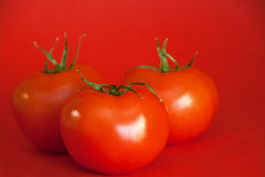 Red Juicy Tomatoes royalty free stock image