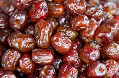 Red jujube Royalty Free Stock Photography