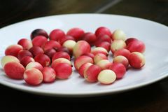Red karonda on white plate. Close up Red karonda on white plate stock photography
