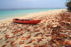 Red kayak and leaves on the beach Stock Photo