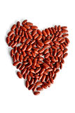 Red kidney bean Royalty Free Stock Image