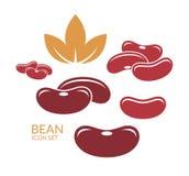 Red kidney bean. Vector illustration (EPS&#x29 stock illustration