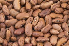 Red Kidney Beans Also Know as Azuki Beans or Rajma Seeds Background