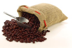 Red kidney beans in a burlap bag. And an aluminum scoop on a white background Royalty Free Stock Images