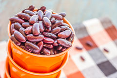 Red Kidney Beans. Close-up stock photo stock photos