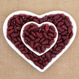 Red Kidney Beans Stock Image