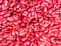 Red Kidney Beans Royalty Free Stock Image