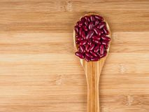 Red Kidney Beans. Raw Red Kidney Beans in Wooden spoon placed on wood floor Royalty Free Stock Image