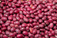 Red kidney beans texture background Royalty Free Stock Photo