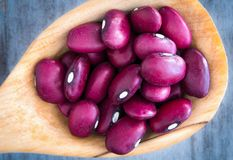 Red Kidney Beans in a wooden rustic spoon Royalty Free Stock Image