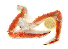Red king crab leg Royalty Free Stock Photos