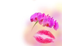Red kiss mark and orchid Stock Photography