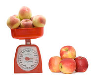 Red kitchen scale weighting peaches Royalty Free Stock Image