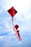 Red Kites Royalty Free Stock Image