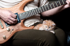 Red kitten asleep in the arms of men. Playing the guitar royalty free stock image