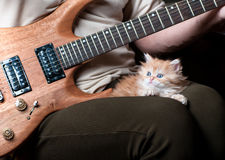 Red kitten asleep in the arms of men. Playing the guitar stock image