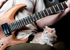 Red kitten asleep in the arms of men. Playing the guitar royalty free stock photos
