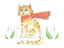 Red Kitten in the Scarf. Watercolor isolated. vector illustration