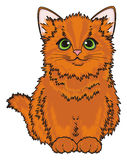 Red kitten sit Stock Images