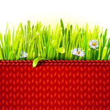 Red knitted cloth with grass Royalty Free Stock Image