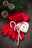 Red knitted gloves Royalty Free Stock Photos