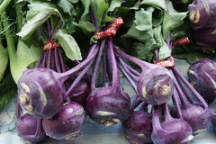 Red Kohlrabi, Red Knol khol, Red German turnip Stock Photos