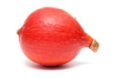 Red kuri squash Stock Photo