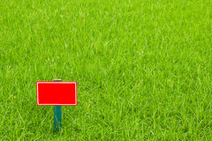 The red label. On the grass royalty free stock images