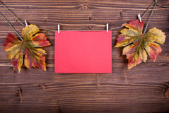 Red Label With Autumn Leaves On A Line Stock Image