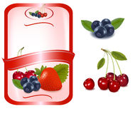 Red label with fruit and berries. Vector. Royalty Free Stock Photography